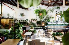 The Plant Society Via Iwantthat Event Themes Decor Nursery Restaurant