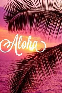 Aloha. #girlzactive #sunset
