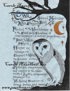 Owl Shamanism Parchment. By Carole Anzolletti. $13.33