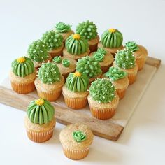Baker Alana Jones-Mann Dishes On Dessert Inspo and DIY Designs - Cupcakes Cupcakes Succulents, Kaktus Cupcakes, Cupcake Party, Cupcake Cakes, Easy Dessert Bars, Cactus Cake, Cactus Food, Savoury Cake, Cute Food