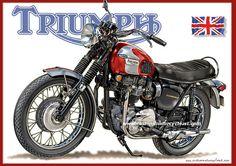 Looks like my 125 ? Triumph Motorbikes, Triumph Bonneville, Triumph Motorcycles, Trike Bicycle, Moto Bike, British Motorcycles, Cool Motorcycles, Street Scrambler, Triumph Street Triple