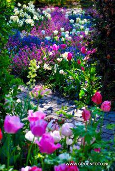 ~ abundant garden ~
