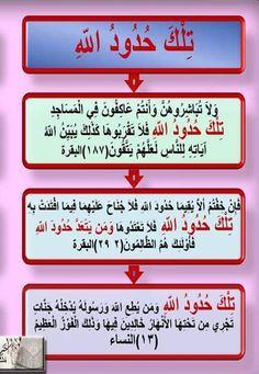 """""""تِلْكَ حُدُودُ الله"""" : ٣ مرات فى القرآن : فى البقرة مرتان، وفي النساء"""