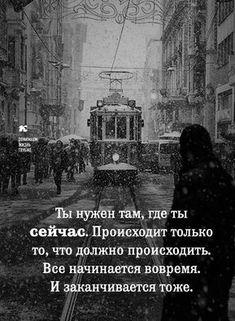 Bingo Quotes, Jokes Quotes, Wisdom Quotes, Life Quotes, Positive Motivation, Life Motivation, Russian Quotes, Destin, Life Philosophy