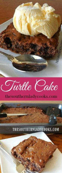TURTLE CAKE - The Southern Lady Cooks