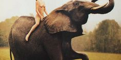 55 Nakedest Abercrombie & Fitch Ads of All Time (NSFW) -Cosmopolitan.com