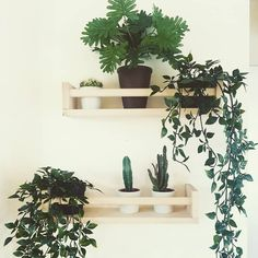 14 Brilliant Ways People Use IKEA Spice Racks IKEA's Bekvam spice rack is ultra-hackable. Yes, you can use it to store your spices, obviously. But it can be worked in so many other genius ways, from the nursery to your entryway. Ikea Plants, Fake Plants Decor, Plant Decor, Indoor Plants, Ikea Furniture Hacks, Ikea Hacks, Modern Kitchen Cabinets, Ikea Kitchen, Kitchen Hacks