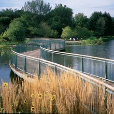 Chicago Botanical Garden bridge