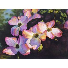 Pink Dogwoods art watercolor painting print by Cathy Hillegas, 7.6x10,... (27 CAD) ❤ liked on Polyvore featuring home, home decor, wall art, purple flower wall art, tree wall art, dogwood tree, watercolor painting и green tree