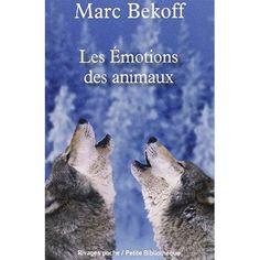 Amazon.fr: Ethologie: Livres