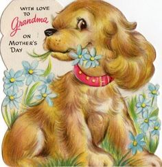 """""""With Love to Grandma on Mother's Day"""" Cocker Spaniel card"""