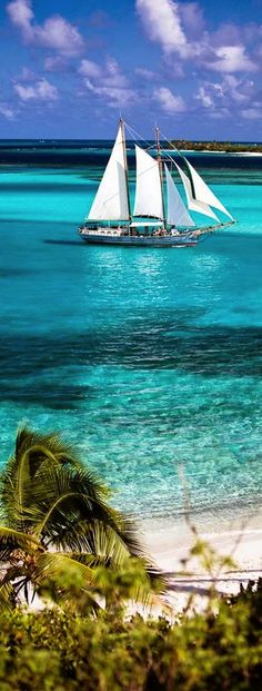 Union Island, the Grenadines {{ I would sell my house and my car to live on a boat like this}}