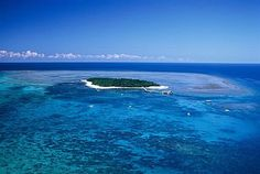 Save on local Cairns Reef Trips, Rainforest Tours, and Accommodation. Cairns, Australia Travel, Trips, Places To Visit, Waves, Outdoor, Viajes, Outdoors, Outdoor Living