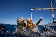 Freediving World Champ Alexey Molchanov in His Own Words