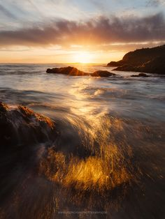 Photograph Shimmer by Jason Chong on 500px