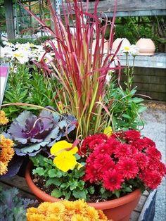 Pictures - Fall Container Gardening - Philadelphia Gardening   Examiner.com