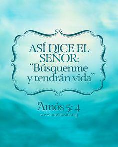 #rpsp #Biblia #lectura #diaria #Amos