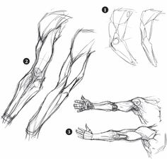 Schizzi e disegni di braccia