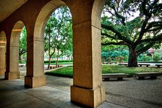 Get back to LSU...  This picture is of a portion of the quad, I can't tell which building it's looking out from though (maybe Coates?)-- one of my very favorite places on earth!