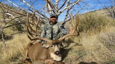 Arizona Strip Mule Deer - Big Game Hunting - Hunting Trips - Outfitter Directory