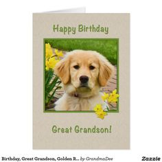 Birthday Great Grandson Golden Retriever Dog Card Dogs