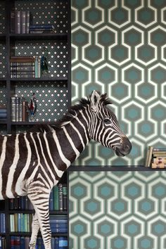 This classic geometric pattern from Cole and Son is designed by David Hicks. The enduring geometric Hicks' Hexagon pattern has been printed at a bold large-scale. A total of six new colour-ways are av Cole And Son Wallpaper, Green Wallpaper, Wall Wallpaper, Zebra Wallpaper, Wallpaper Ideas, Wallpaper 2016, Wallpaper Designs, Modern Wallpaper, Original Wallpaper