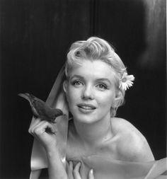 Marilyn Monroe fotografiada por Cecil Beaton (1956)