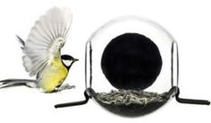 Close Up Bird Feeder |  1392+ As Seen on TV Items: http://TVStuffReviews.com/close-up-bird-feeder