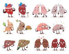 Human organs characters vector. Human Icons. $5.00