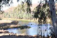 River Lodge, Lodges, African, Mountains, Nature, Animals, Cabins, Naturaleza, Animales