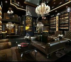 Wine study and whiskey room