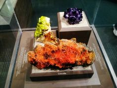 Mineralia Goes to the Smithsonian
