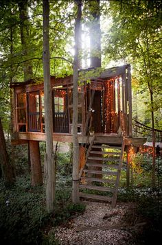 Peter Bahouth's Treehouses