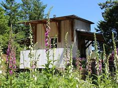 Architect Designed Cabin in the Woods, Pender Island. We invite you to relax and enjoy our beautiful, peaceful retreat nestled in five private acres on South. Cabin In The Woods, Road Trip Adventure, Home And Away, Interior Design Living Room, Acre, Gazebo, Cottage, Outdoor Structures, Vacation Rentals