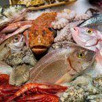 Ποια ψαρια πρεπει να τρωμε ανα εποχη