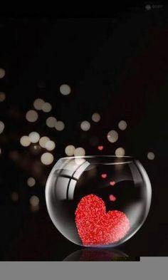 i love you gif Je T Aimes, I Love Heart, My Love, Corazones Gif, Animated Heart, Love You Gif, Heart Gif, Heart Wallpaper, Valentine Day Love