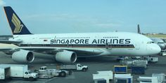 Singapore's New A380 Cabins Are Being Revealed November 2, 2017 - One Mile at a Time https://link.crwd.fr/2Ylo