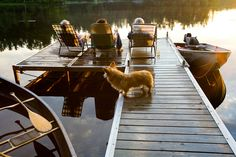 At the lake house Lakeside Living, Outdoor Living, Tent Living, Santa Helena, Dock Of The Bay, Lake Cottage, Yale School Of Art, Cabins And Cottages, Steuben Glass