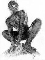 Spiderman by Define-X