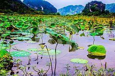 Beautiful view of lake with the mountains-Vietnam