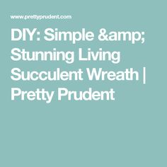 DIY: Simple & Stunning Living Succulent Wreath | Pretty Prudent