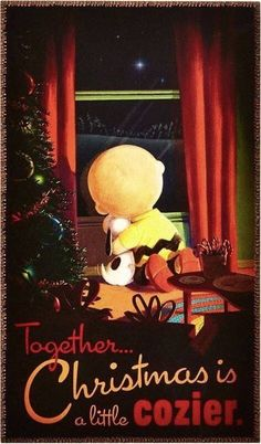 'Together Christmas is Cozier!' Charlie Brown and Snoopy. Peanuts Christmas, Merry Little Christmas, Christmas Love, Christmas Pictures, Christmas Humor, Winter Christmas, Xmas, Christmas Animals, Christmas Quotes