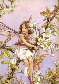 ^Love the whole nostalgic feeling one gets from Flower Fairies