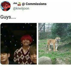 where jungkook likes to crossdress and his biological brother Taehyung always having a problem down there because of ju. Diecisiete Memes, Vkook Memes, Bts Boys, Bts Bangtan Boy, K Pop, Shop Bts, Bts Memes Hilarious, Bts Tweet, My Boo