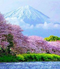 Japan/Mt.Fuji spring colorBeautiful via; mayu @mayu25060495 ismail damarseçkin @merten_65