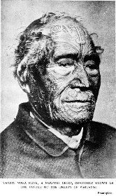 Tamati Waka Nene, a Ngapuhi Chief, Commonly Known as the Father of the Treaty of Waitangi Japanese Sleeve Tattoos, Full Sleeve Tattoos, Chinese Tattoos, Line Tattoos, Tattoos For Guys, Polynesian Art, Polynesian Tattoos, Treaty Of Waitangi, Nz History