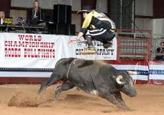 Rodeo clowns are the only clowns I am not afraid of. Rodeo Events, Bucking Bulls, Rodeo Cowboys, Rodeo Queen, Rodeo Life, Bullen, Fun Days Out, Bull Riders, Horses And Dogs
