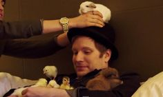 patrick stump with bunnies - Google Search
