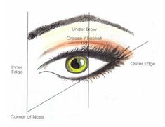 How to Apply Eye Makeup