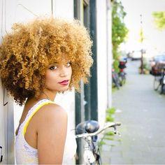 #kinkycurlsla #kinkyhair #curls #naturalhair #losangeles #afro